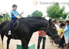 The joys of horseback riding in Taichung